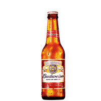 Budweiser-american-lager-long-neck-343-ml-1-unidade_200x200-pu5d9b6_1