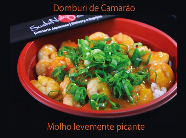 Domburi_camar_o_01_web